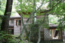 別荘P1030135.jpg